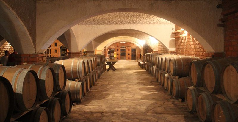 wine-tour-croatia-matusko