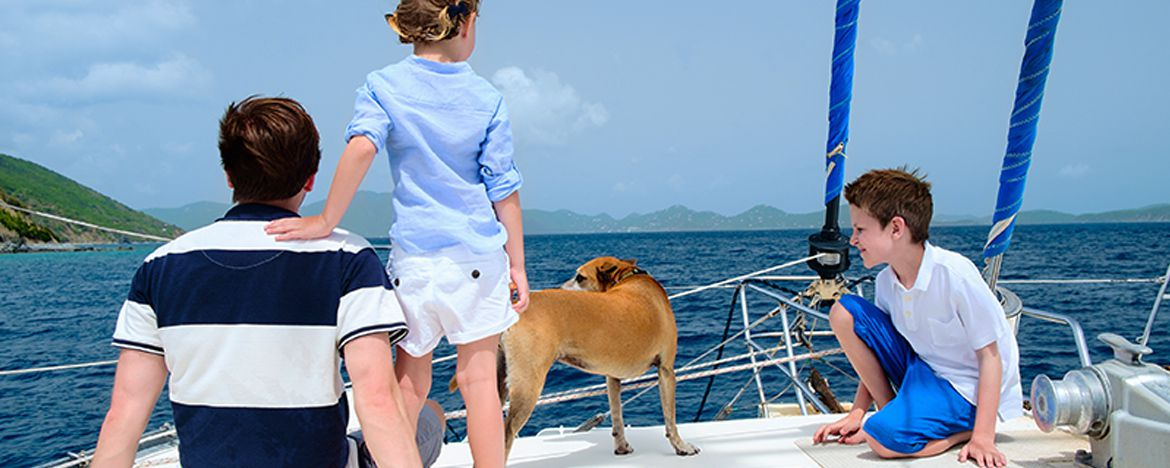 7 Tips For Safe Sailing With Dogs in Croatia