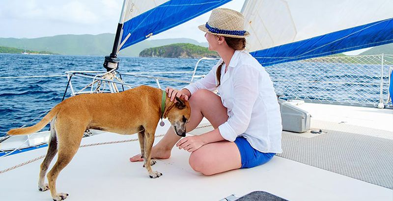 shade-on-board-sailing-with-dogs