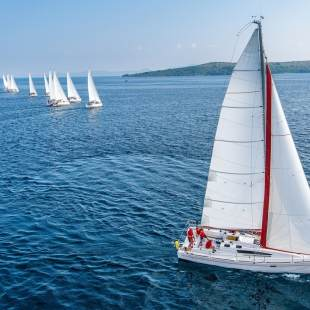 Sailing yachts Elan 350 Performance - 3 cab. X-Ray
