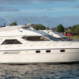Motor boats Princess 480 Carpe Diem
