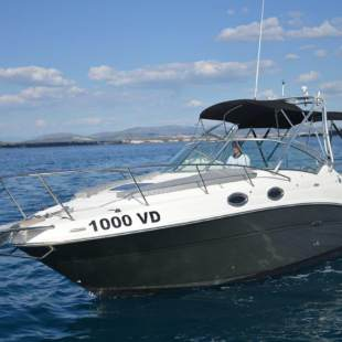 Motor boats Sea Ray 275 Amberjack 1000 VD